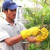 atalian-landscaping