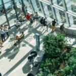 The Benefits of Indoor landscaping