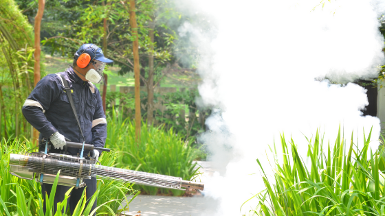 Best Practice For Pest Control In Residential Area